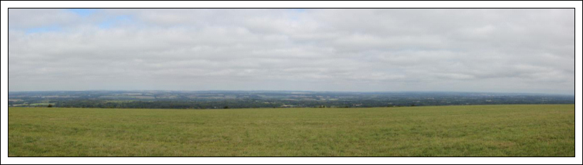 Black Down, Butser Hill, Walbury Hill and Wendover Woods